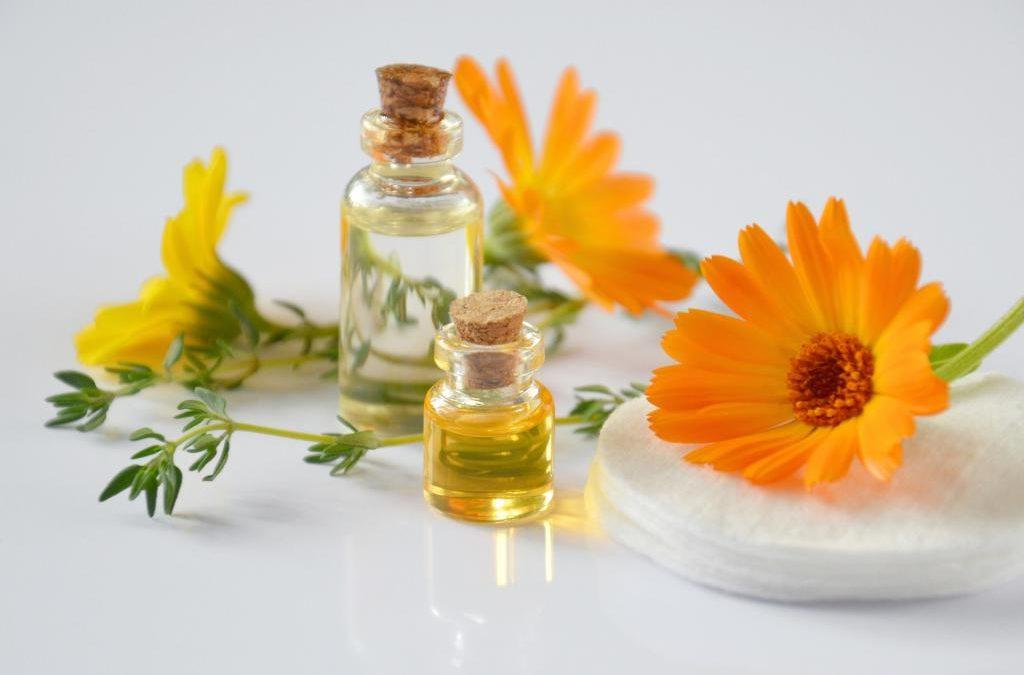 Enam Manfaat Bunga Calendula Bagi Kecantikan